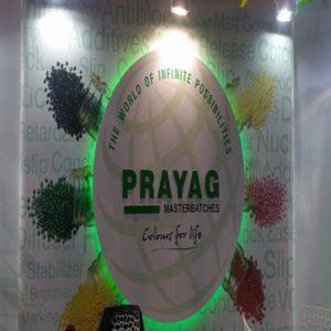 P4 Expo India 2