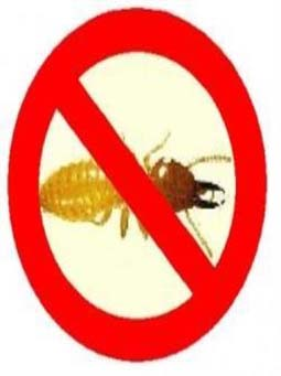 antitermite-masterbatch