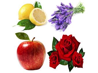 fragrance-masterbatches